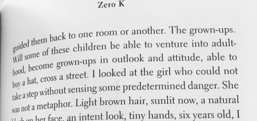 preview Don DeLillo, Zero K