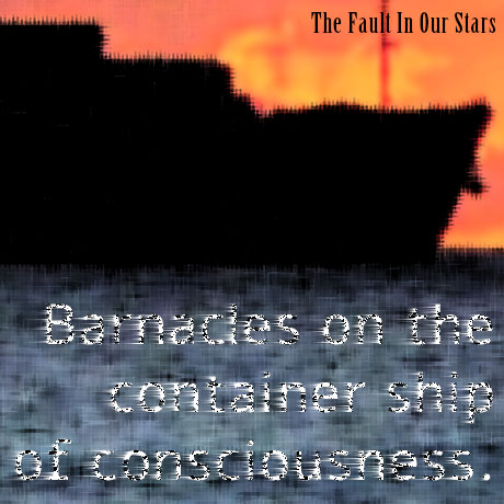 Barnacles on the container ship of consciousness - The Fault in Our Stars