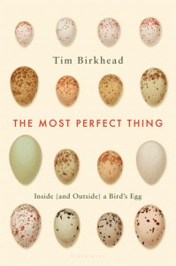 The Most Perfect Thing: Inside (and Outside) a Bird's Egg by Tim Birkhead