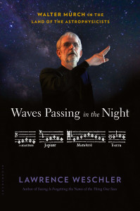 Waves Passing in the Night by Lawrence Weschler