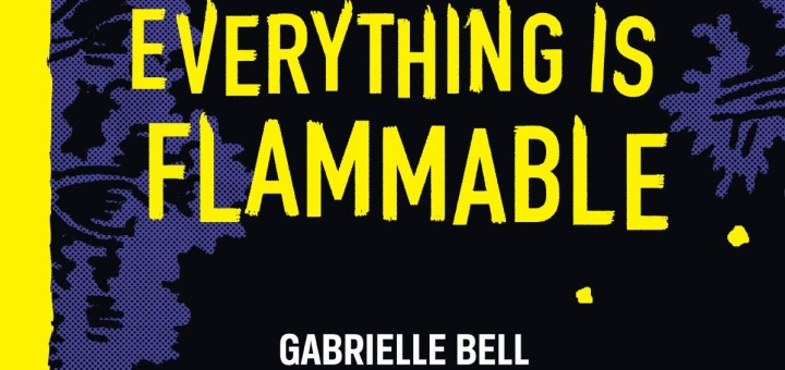 Everything Is Flammable by Gabrielle Bell