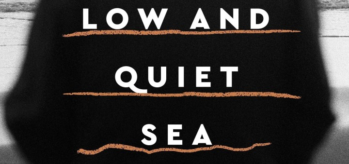 From a Low and Quiet Sea by Donal Ryan
